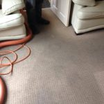 Professional Carpet and Upholstery Cleaning Halifax