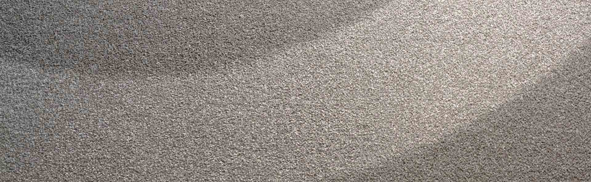 Professional Carpet Cleaning Halifax