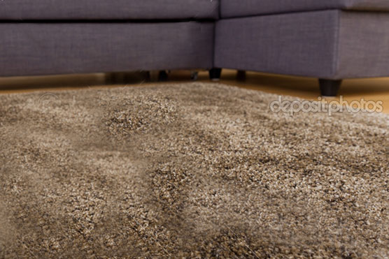 Professional Rug-cleaning Halifax